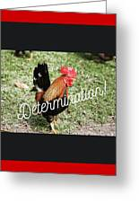 Rooster Living Greeting Card