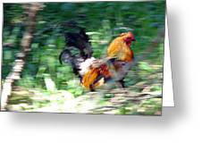 Rooster On The Island Greeting Card