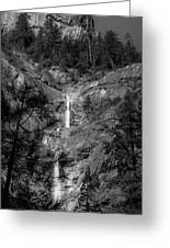 Root Creek Falls Greeting Card