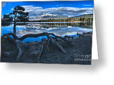 Roots On The Edge Of Beauvert Greeting Card