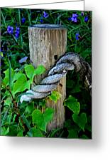 Rope And Vine Greeting Card