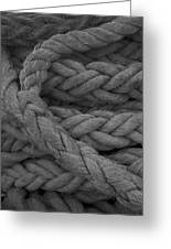 Rope I Greeting Card