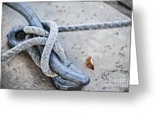 Rope On Cleat Greeting Card