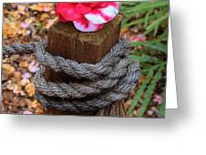 Rope Pillar And Camellia Greeting Card
