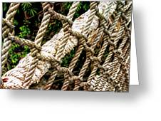 Roped Greeting Card