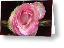 Rosa Rose Portrait Greeting Card