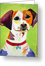 Roscoe The Jack Russell Terrier Greeting Card