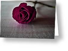 Rose #003 Greeting Card