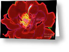 Rose 18-2 Greeting Card