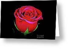 Rose 18-9 Greeting Card