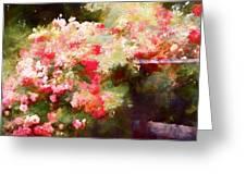 Rose 375 Greeting Card