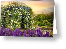 Rose Arbor At Sunset Greeting Card