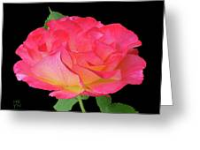Rose Blushing Cutout Greeting Card