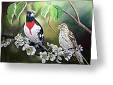Rose Breasted Grosbeaks Greeting Card
