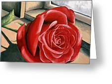 Rose By A Window Greeting Card