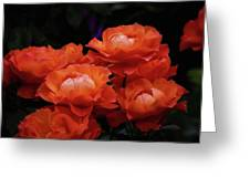 Rose Cluster Greeting Card