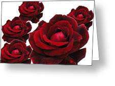 Rose Collage Greeting Card