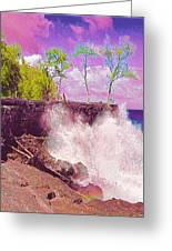 Rose Colored Splash At Mackenzie Greeting Card