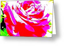 Rose Greeting Card by Dana Patterson
