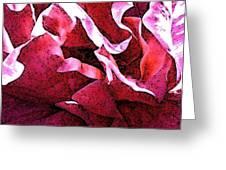 Rose Fresco Greeting Card
