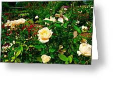 Rose Gardens Greeting Card