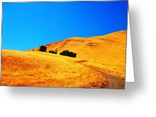 Rose Hill Cemetery Hills  Greeting Card