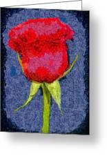Rose - Id 16236-104956-0793 Greeting Card