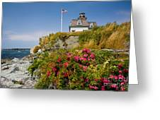 Rose Island Roses Greeting Card