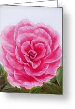 Rose Greeting Card by Joni McPherson