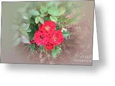 Rose Nest Greeting Card