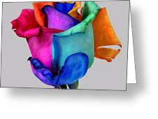 Rose Of Many Colors Greeting Card