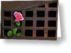 Rose On Trellis Greeting Card