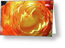 Rose Orange Yellow Roses Floral Art Print Nature Baslee Troutman Greeting Card