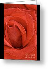 Rose-paintdaubs-2 Greeting Card