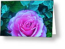 Rose Petal Perfection Greeting Card
