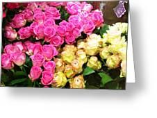 Rose Photoposter Greeting Card