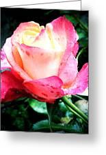 Rose Solitude  Greeting Card