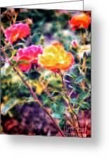 Rose Sweet Greeting Card