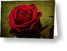 Rose Tapestry Greeting Card