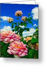 Rose To The Sky Greeting Card