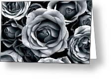 Rose Tones Greeting Card