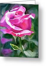Rose Violet Bud Greeting Card