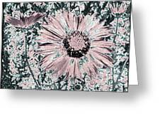 Rose Wine Daisies Greeting Card
