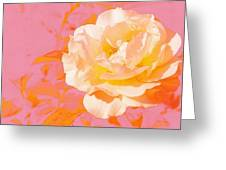 Rose With Pink Background Greeting Card