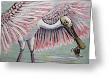 Roseate Spoonbill On The Foggy Laguna Madre Greeting Card