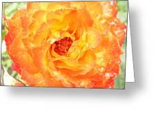 Rosegarden No. 22 Greeting Card