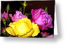Roses 4 Greeting Card