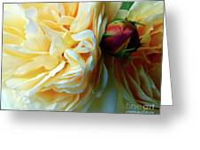 Roses And Bud Greeting Card
