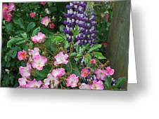 Roses And Lupines Greeting Card