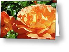 Roses Art Prints Orange Rose Flower 11 Giclee Prints Baslee Troutman Greeting Card